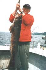 Bottom Fishing for Ling Cod