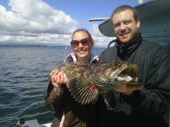 lingcod fishing in Seattle